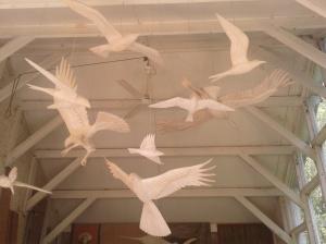 50th bird 1