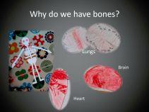 bones_page_10