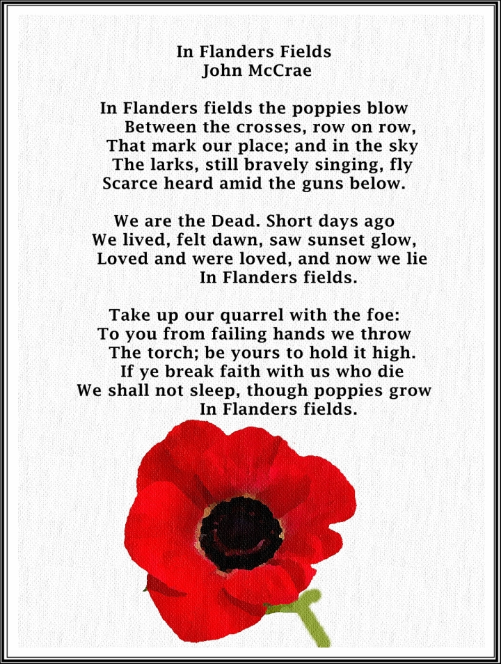 in-flanders-fields.jpg